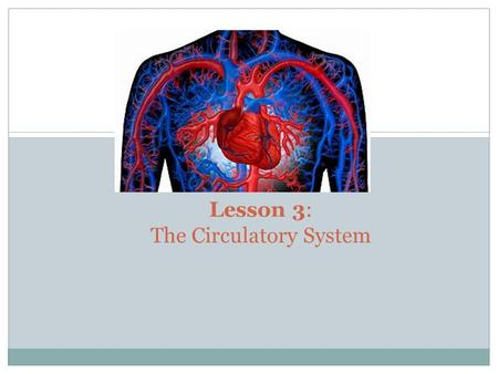 Lesson 3: The Circulatory System