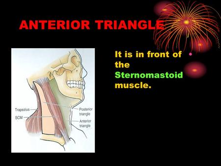 ANTERIOR TRIANGLE It is in front of the Sternomastoid muscle.