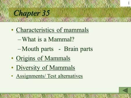 Chapter 35 Characteristics of mammals What is a Mammal?