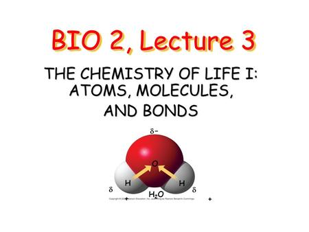 THE CHEMISTRY OF LIFE I: ATOMS, MOLECULES, AND BONDS