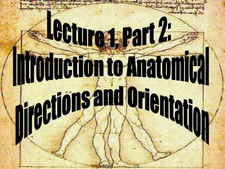 Introduction to Anatomical Directions and Orientation