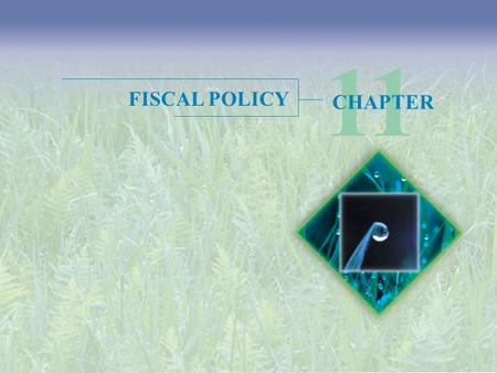 11 FISCAL POLICY CHAPTER.