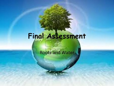 Final Assessment Roots and Water. M.L.O To prepare for and plan your essay.