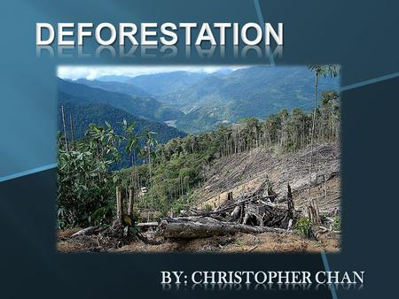 Deforestation By: Christopher Chan.