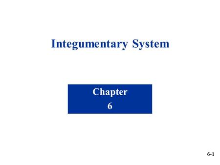 Integumentary System Chapter 6 6-1.