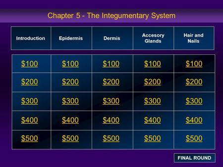 Chapter 5 - The Integumentary System $100 $200 $300 $400 $500 $100$100$100 $200 $300 $400 $500 IntroductionEpidermisDermis Accesory Glands Hair and Nails.