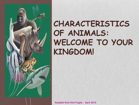 CHARACTERISTICS OF ANIMALS: WELCOME TO YOUR KINGDOM! Adapted from Kim Foglia - April 2015.