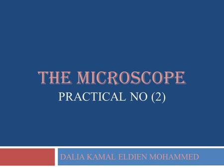 The microscope practical NO (2)