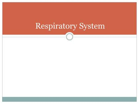 Respiratory System. Purpose of the Respiratory System To exchange oxygen and carbon dioxide between the atmosphere and the blood of the human body. 