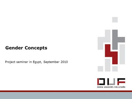 Gender Concepts Project seminar in Egypt, September 2010.