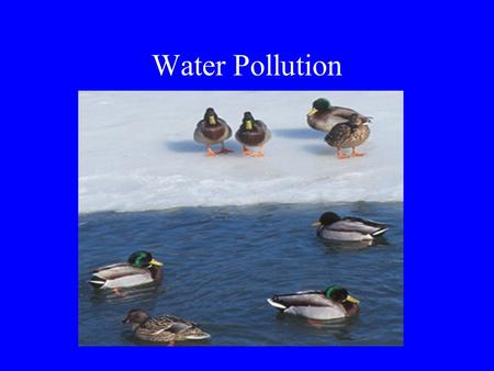 Water Pollution. The Hydrologic Cycle World Water Supply 97.200% salt water in the oceans 02.014% ice caps and glaciers 00.600% groundwater 00.009% surface.