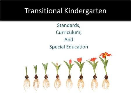 Transitional Kindergarten Standards, Curriculum, And Special Education.