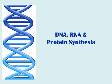 DNA, RNA & Protein Synthesis.