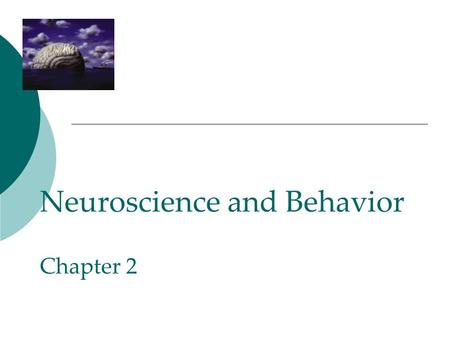 Neuroscience and Behavior Chapter 2. The Brain!  Takes care of all our required tasks (some we do not even give a second thought).  The more complex.