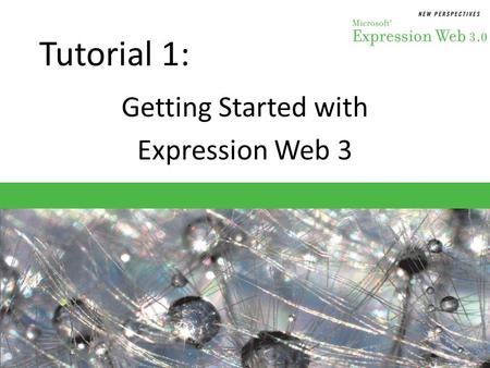 Getting Started with Expression Web 3