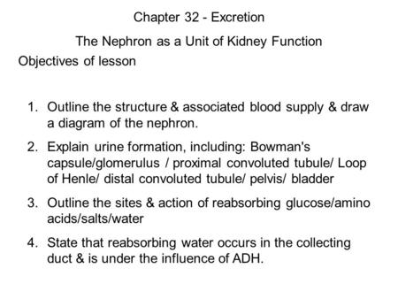 Objectives of lesson 1. Outline the structure & associated blood supply & draw a diagram of the nephron. 2. Explain urine formation, including: Bowman's.
