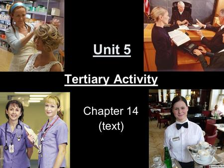 Unit 5 Tertiary Activity Chapter 14 (text). Introduction Tertiary Activity: Involves service industries, which provide services for people. Ex. Doctor,