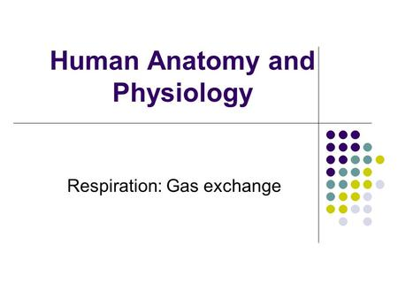Human Anatomy and Physiology Respiration: Gas exchange.
