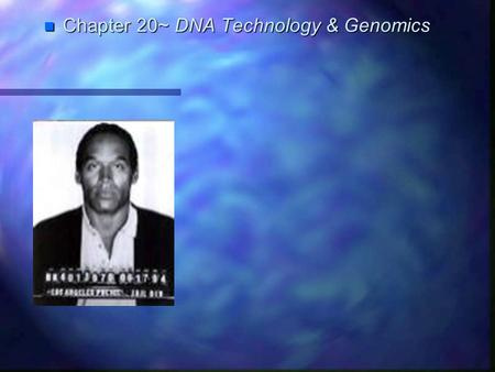 Chapter 20~ DNA Technology & Genomics