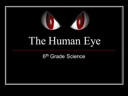 The Human Eye 6 th Grade Science. Parts of the Eye Eye Socket Pupil Cornea Iris Eyelashes Eyelid Sclera Orbital Muscles Optic Nerve Lens.