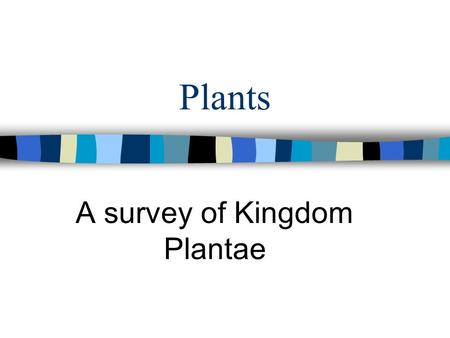 Plants A survey of Kingdom Plantae. Characteristics of Plants n All Plants are Producers - Photosynthetic n Plants are Multicellular n Plant cells have.