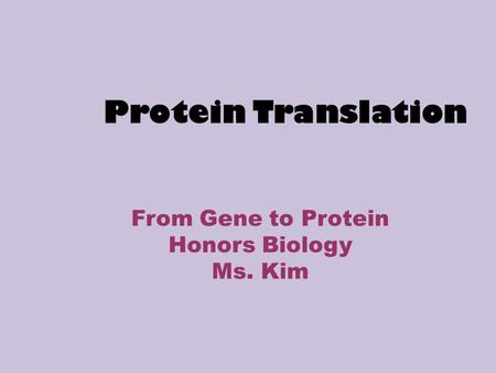 Protein Translation From Gene to Protein Honors Biology Ms. Kim.