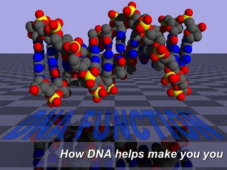How DNA helps make you you. DNA Function Your development and survival depend on… Your development and survival depend on…  which proteins your cells.
