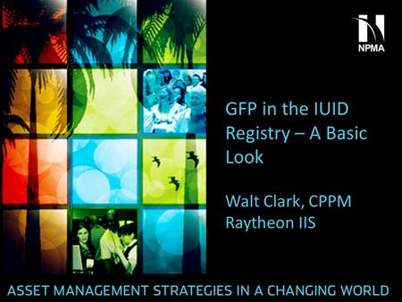GFP in the IUID Registry – A Basic Look Walt Clark, CPPM Raytheon IIS.