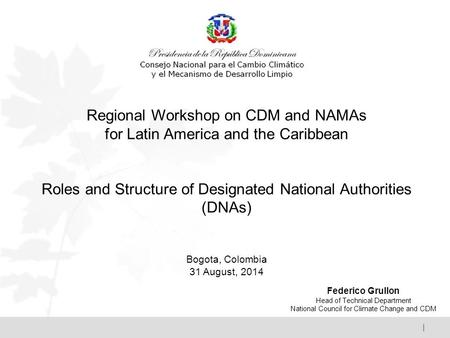 | Regional Workshop on CDM and NAMAs for Latin America and the Caribbean Roles and Structure of Designated National Authorities (DNAs) Bogota, Colombia.