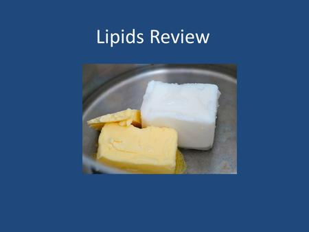 Lipids Review.