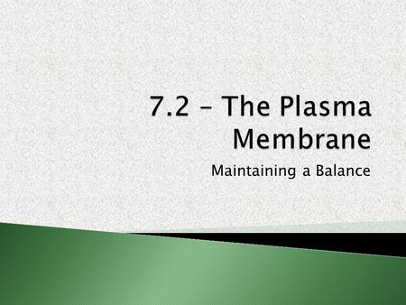 Maintaining a Balance. 1.The plasma membrane is a SELECTIVELY (SEMI-) PERMEABLE membrane that allows nutrients and wastes to enter and exit the cell.