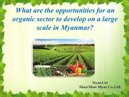 What are the opportunities for an organic sector to develop on a large scale in Myanmar? Nyan Lin Shan Maw Myae Co.,Ltd.