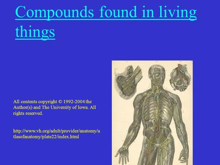 Compounds found in living things All contents copyright © 1992-2004 the Author(s) and The University of Iowa. All rights reserved.