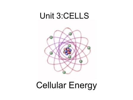 Unit 3:CELLS Cellular Energy. Carbon Compounds Objective What are the functions of each group of organic compounds?
