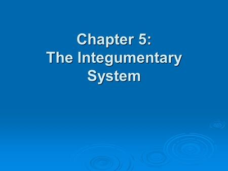 Chapter 5: The Integumentary System.  What are the structures and functions of the integumentary system?