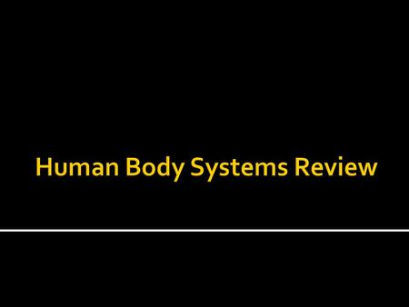 Human Body Systems Review