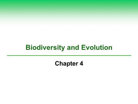 Biodiversity and Evolution Chapter 4. 4-1 What Is Biodiversity and Why Is It Important?  Concept 4-1 The biodiversity found in genes, species, ecosystems,