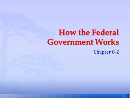 How the Federal Government Works