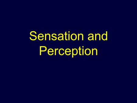 Sensation and Perception. Sensation: What is it? The process by which a stimulus in the environment produces a neural impulse that the brain interprets.
