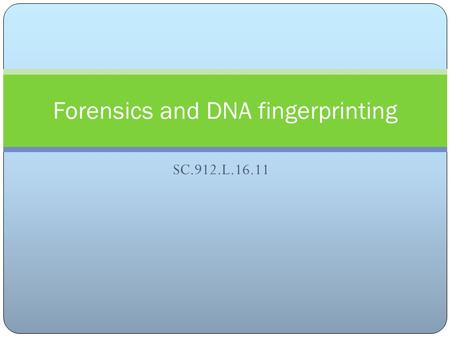 SC.912.L.16.11 Forensics and DNA fingerprinting Discuss the technologies associated with forensic medicine and DNA identification, including restriction.