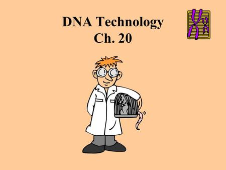 DNA Technology Ch. 20 Figure 20.1 An overview of how bacterial plasmids are used to clone genes.
