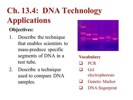 Ch. 13.4: DNA Technology Applications
