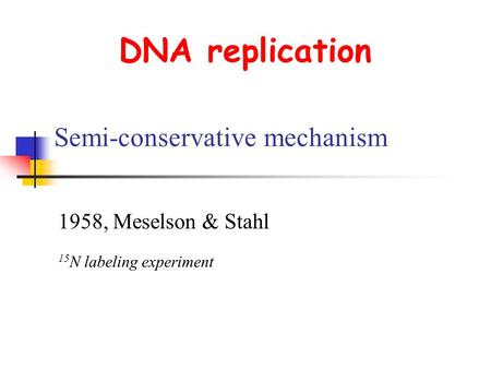 DNA replication Semi-conservative mechanism 1958, Meselson & Stahl 15 N labeling experiment.