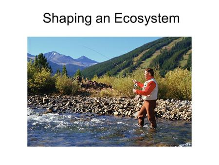 Shaping an Ecosystem. Biotic and Abiotic Factors Ecosystems are influences by living and non living Biotic factors: all biological factors in an ecosystem.