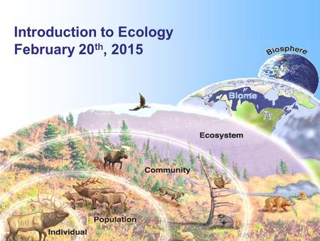 Introduction to Ecology February 20 th, 2015. Ecology: deals with different levels of organization.