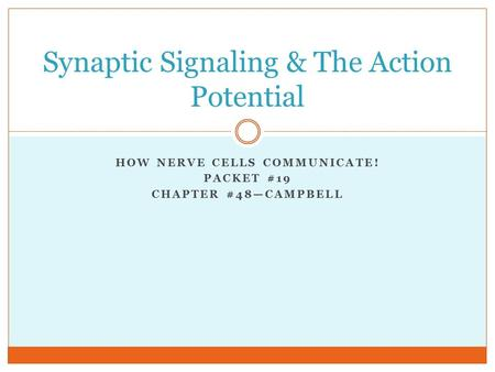 Synaptic Signaling & The Action Potential