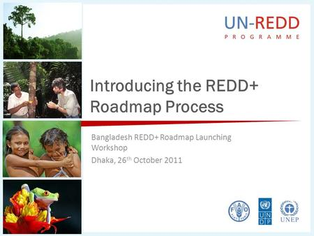 Introducing the REDD+ Roadmap Process Bangladesh REDD+ Roadmap Launching Workshop Dhaka, 26 th October 2011.