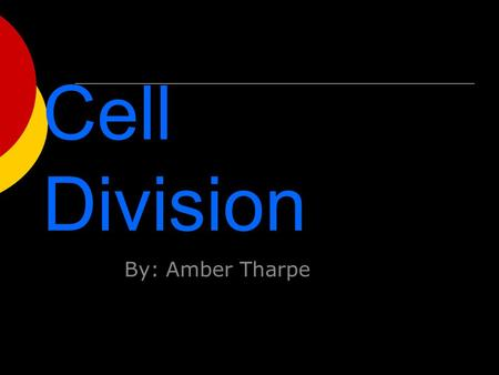 Cell Division By: Amber Tharpe. Activation  Humans make 2 trillion new cells per day.