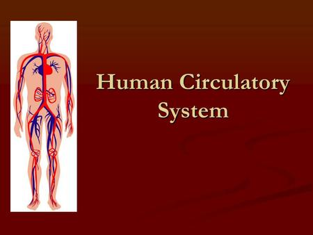 Human Circulatory System. Structure and Function Lesson 1.