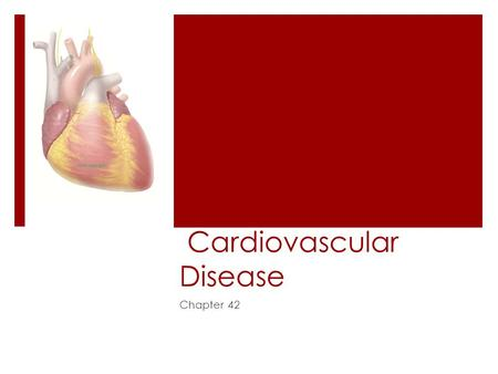 Cardiovascular Disease Chapter 42. Epidemiology  #1 killer in 2005 – 864,480 deaths due to CVD  CVD – CardioVascular Disease  Includes:  CHD (CAD)